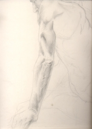 Male arm study