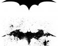 Bat style logo