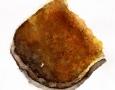 Texture - toast